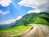 Country road in mountains Royalty Free Stock Photography