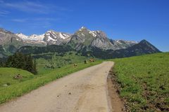 Country road and Mt Saentis Royalty Free Stock Images