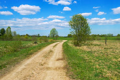 Country road. Stock Image