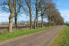 Country road in the Netherlands with farmland Stock Image