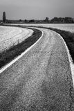 Country road through paddy fields. Black and white photo Royalty Free Stock Photos