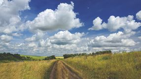 Sunny summer landscape.Beautiful view of green hills,fields and pastures. royalty free stock photos