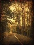 Country Road. A photo of an Australian road taken from a car window Stock Photo