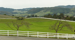 Country Road with Picket Fence. Country road with white picket fence Royalty Free Stock Photography
