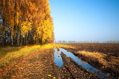 Country road and plowed field Royalty Free Stock Photos