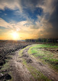 Country road through the plowed field Royalty Free Stock Photos