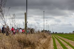 Country Road in Portugal with vegetation on both sides. Group of.  royalty free stock photography