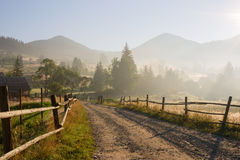 Country road  at the  rays of the rising sun Stock Photography