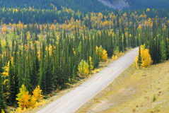 Country road in river valley Royalty Free Stock Photo