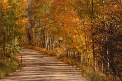 Country Road in the Rockies Royalty Free Stock Photography