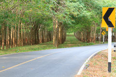 Country road with rubber trees and traffic signs Stock Images