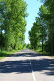 Country asphalt road  Royalty Free Stock Image