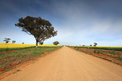 Country road through rural farmland Stock Photos