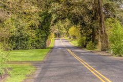 Country road in rural Washington state. Country road in rural driving Washington state stock photos