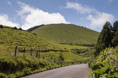 Country road, Sao Miguel, Azores Islands. Good quality of the asphalt country road, lined by fields, meadows and hills. Cloudy spring sky. North of Sao Miguel royalty free stock photography