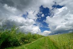 Country road and scenic clouds. Landscape. Royalty Free Stock Photography