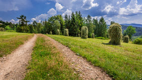Country road between the sheaves of hay Royalty Free Stock Photography