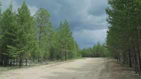 A country road through the Siberian taiga. A storm is approaching stock video