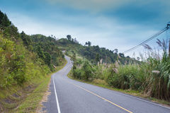 Country road side Royalty Free Stock Photos
