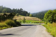Country Road A Stock Photography
