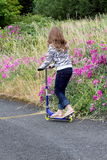 Country Road Skate Scooter. A young country girl playing with a skate scooter wearing zebra jacket by some wild flowers. Shallow depth of field Royalty Free Stock Images