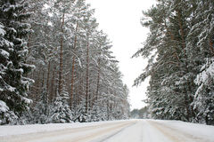 Country road in snow Royalty Free Stock Photography
