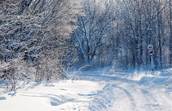 Country road in the snow winter forest. Country road in the white snow winter forest Stock Photography