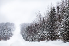 Country Road During a Snowstorm Royalty Free Stock Photography