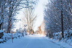 Country road through a snowy winter landscape Royalty Free Stock Image