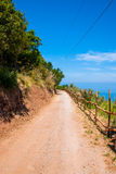 Country road in Southern Italy Stock Images