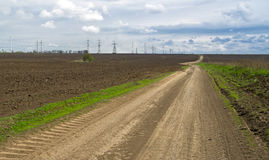 Country road between the spring fields Royalty Free Stock Photography