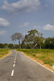 Country road in Sri Lankan national park Royalty Free Stock Images