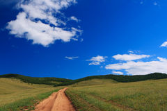 Country road in Steppe Stock Photo