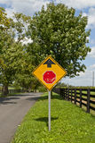 Country road and Stop sign ahead Royalty Free Stock Photo