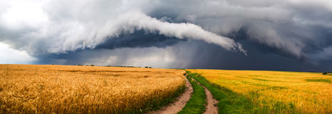 Country road. Storm above field royalty free stock photos