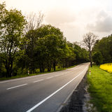 Country road in summer field. Cloudy sky. Stock Photography