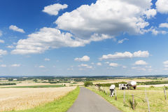 Country Road And Summer Landscape, Germany Stock Photos