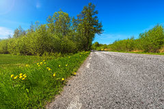 Country road in summer. Country road with rough asphalt in summer, low angel, Sweden Royalty Free Stock Image