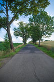Country road in summer Stock Image