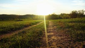 Country road in sunlight Stock Image
