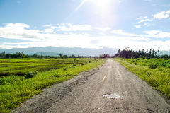 Country road. Sunny day in country road, Thailand Stock Photos