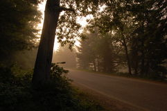 Country Road Sunrise Royalty Free Stock Image