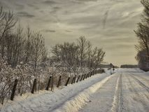 The country road at sunrise. Quebec Canada, January 3,2018. Photo taken when the sun was rising, the trees were filled with snow, everything was white. It was Stock Images