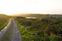 Country Road Sunset, Ireland Stock Photo