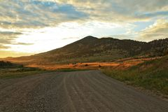Country Road Sunset in Montana Stock Photography