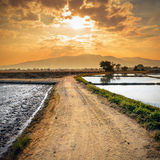 Country road and sunset Royalty Free Stock Images