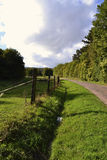 Green Country Road Royalty Free Stock Photo