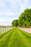 Country road. Surrounded the horse farms at spring Royalty Free Stock Photography