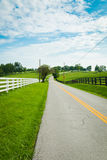Country road surrounded the horse farms. Royalty Free Stock Images