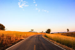 Country Road in Thailand. Country road with blue  sky Royalty Free Stock Image